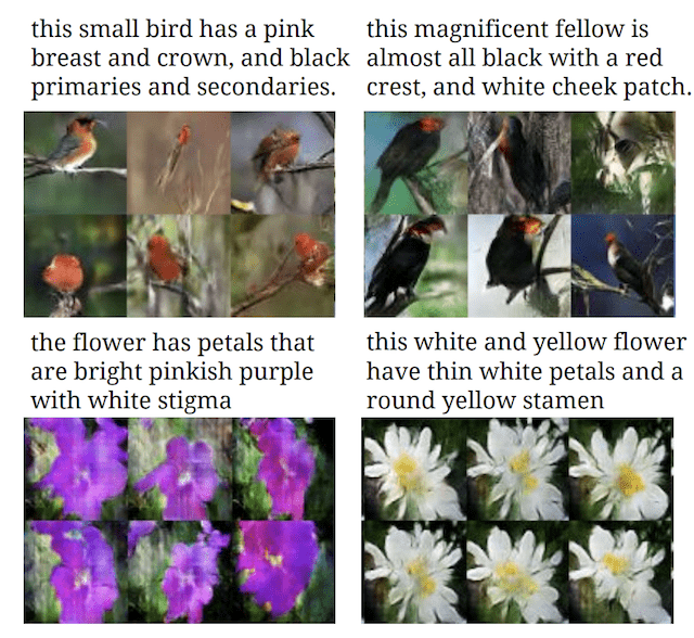 Photographs of Birds and Flowers generated from textual descriptions.