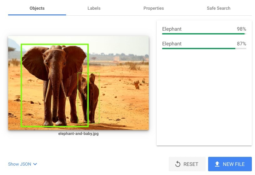 Google's object recognition applied to ta picture. Note that the AI highlights the region in the picture where the elephants are.