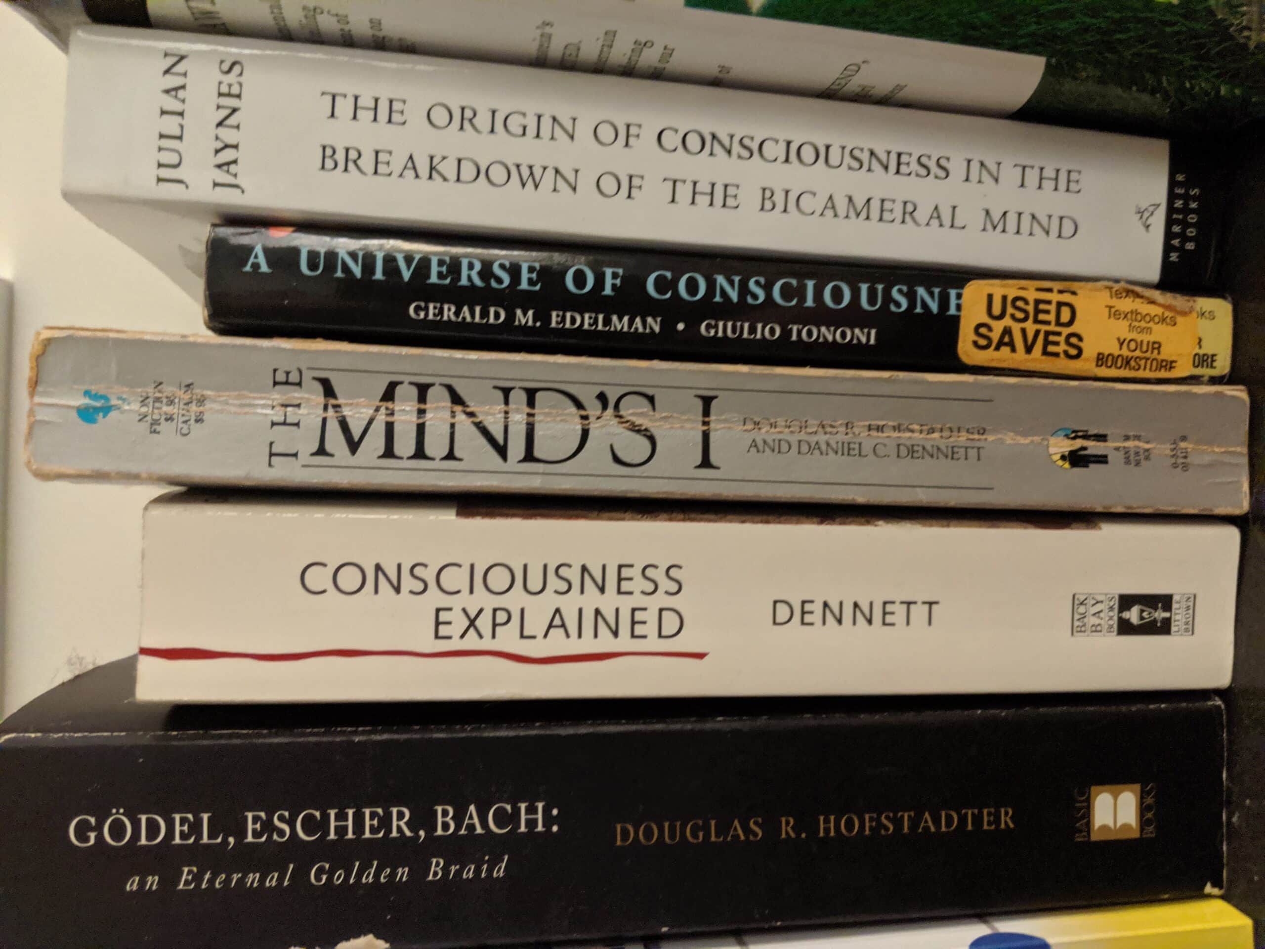 Here are books on consciousness found in our observable universe. These same books will also appear in a purely computational version of our universe – written by computational authors – who apparently are just as baffled by their conscious experiences as we are.